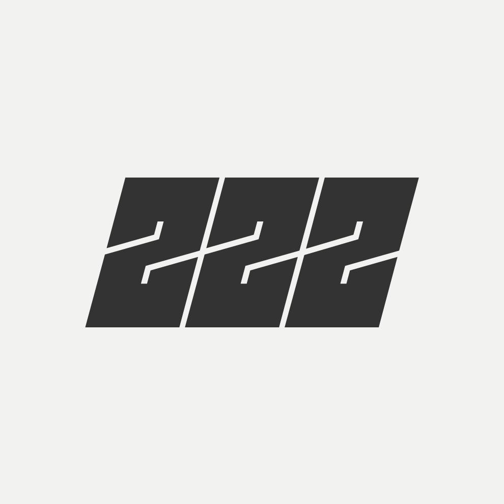 logo 222 Days Downunder